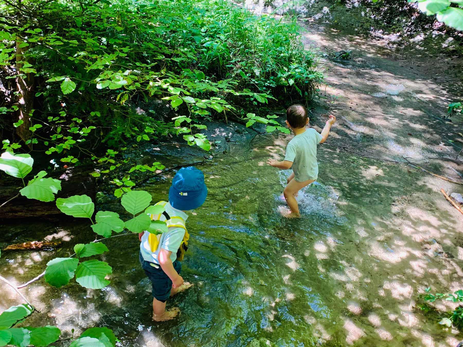 Les Petits Acrobates en forêt